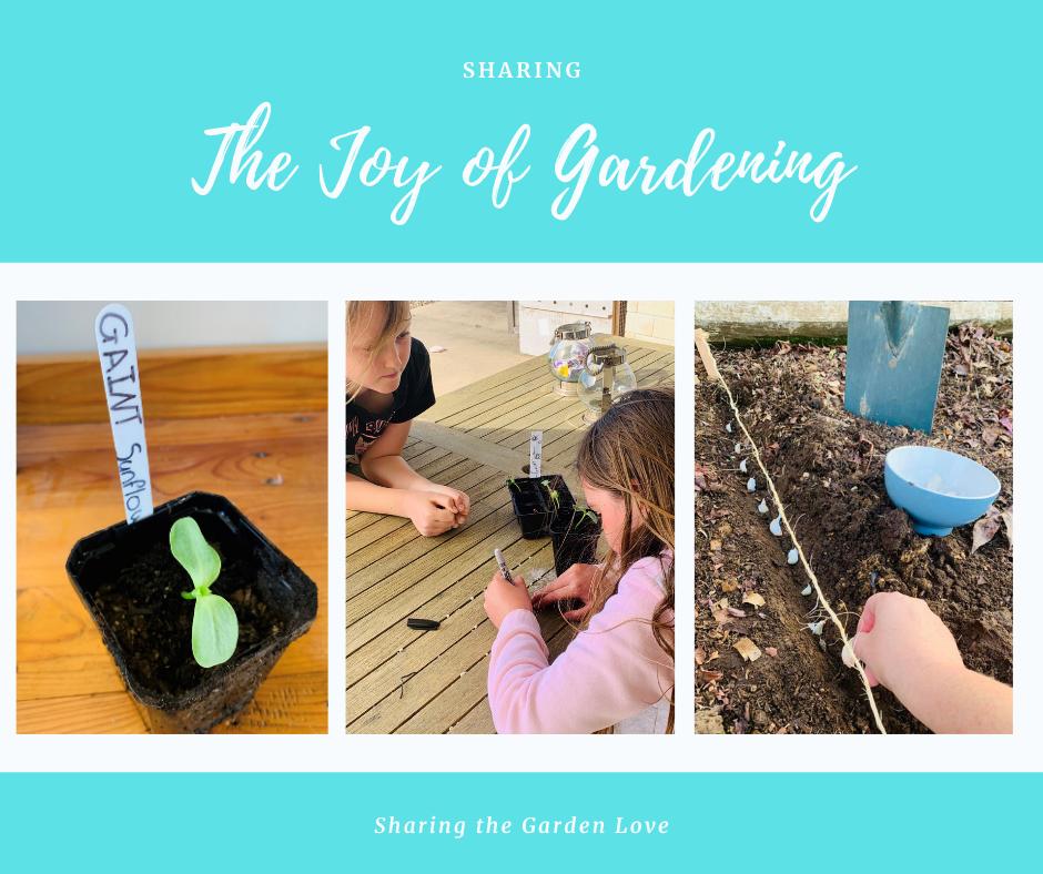 Sharing the Garden Love
