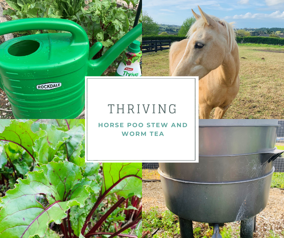 Thriving with Horse Poo Stew and Worm Tea