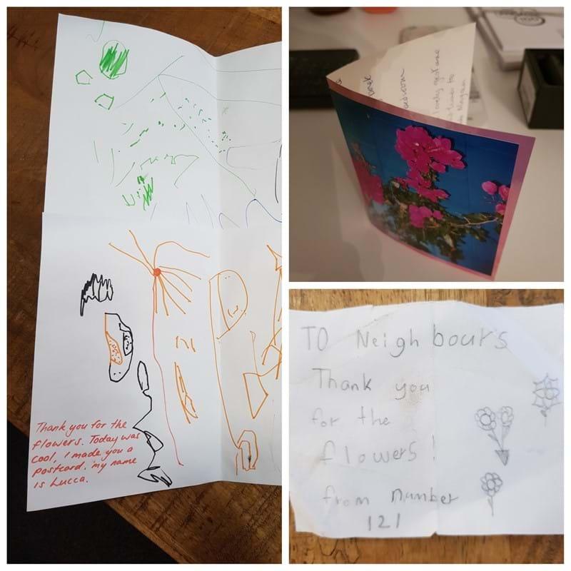 Letterbox surprise