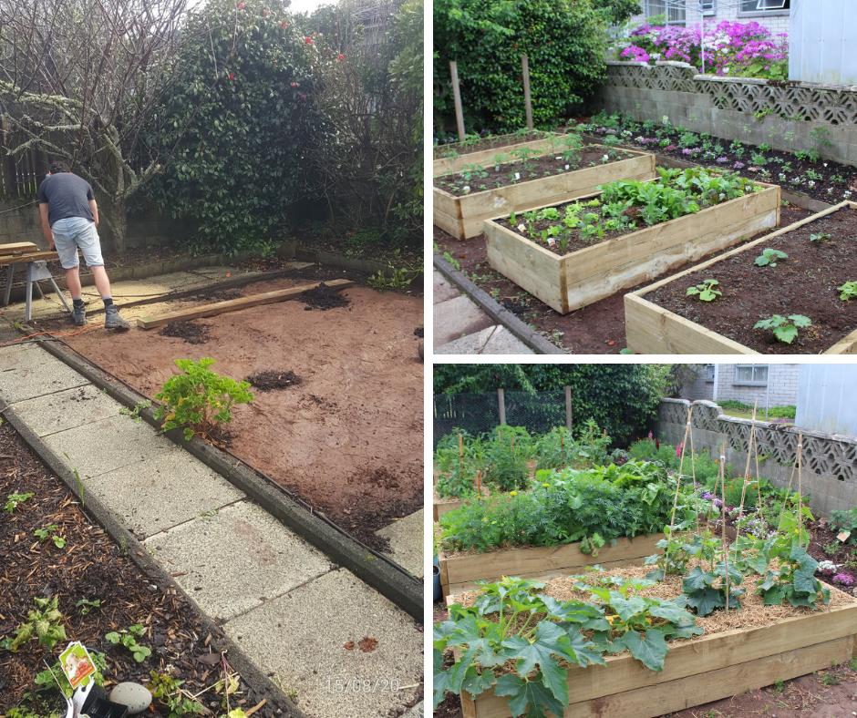 Garden Progress Update